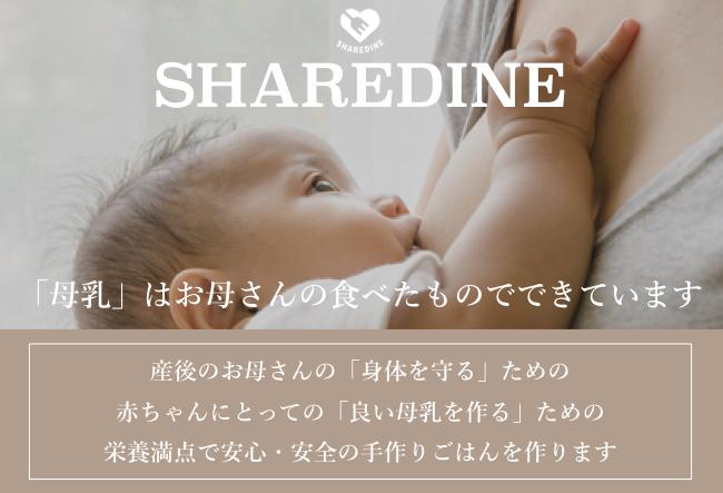 Pregnancy banner